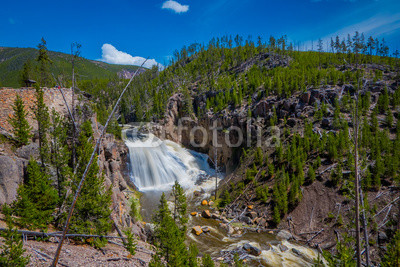 Fotoboard na płycie - Outdoor view of the lower Falls on the Yellowstone River in Yellowstone National Park, Wyoming
